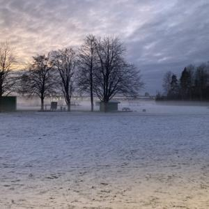 **スウェーデンの雪景色**