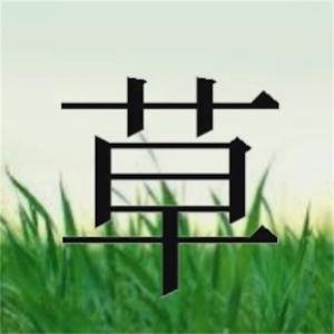 【報告】明日から草の生える記事投稿始まります。