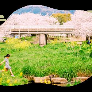 ふるさと納税_熊本県 益城町