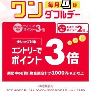 節約_セブンイレブン × PayPay