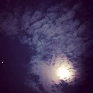 ⭐見上げてごらん、夜の星を…⭐