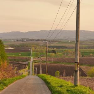 見落としがちな風景を自転車で見つける話【写真】【雑談】