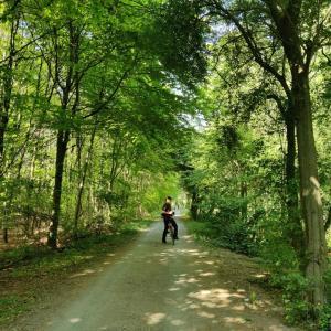 デュッセルドルフ近郊サイクリング