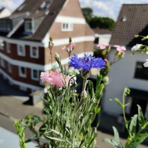 ドイツの国花と害虫退治