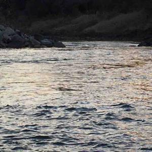 3月28日釣行