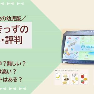 【本音ブログ】RISUきっず(RISU算数幼児版)の口コミ・評判は…?