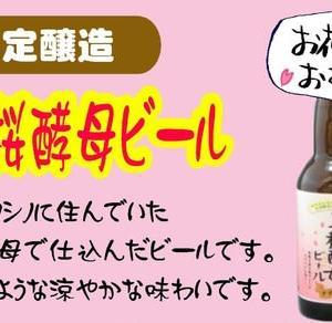 2020年産 秋田美桜酵母ビール発売中!