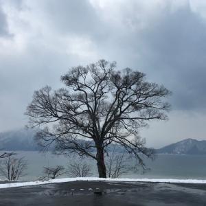 アナログの湖畔風景はいかが!!