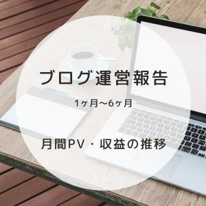 【ブログ運営報告】1ヶ月~6ヶ月のPV・収益・運営状況と、考察、ブログへの想い