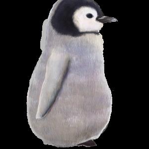 横向きの赤ちゃんペンギンのイラスト