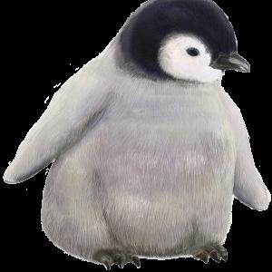 リアルな赤ちゃんペンギンのイラスト