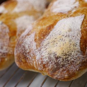 手ごねいらずのパン作り〜 こねないロデヴ簡単レシピ〜【シロの趣味パン】
