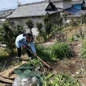 庭の掃除2