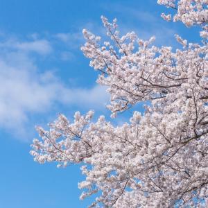 大学生が日本で1番長い春休み(105日間)の話をしたい