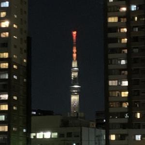 隅田川テラスSSD6キロ:4日目、久しぶりに40分を切る・・・SSDではなくなりつつある