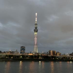 隅田川テラス15キロ:今日はしっかり走り切りました