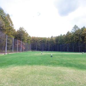 恒例のゴルフの練習(3W、7I、PW、52W):オールドコースへの道・・・はあるのか?