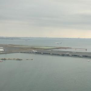 Youtube(大阪空港ライブカメラ)とflightradar24で家族の乗る便をチェックして羽田にお出迎え