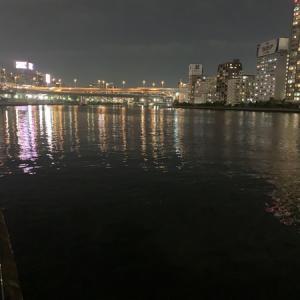 隅田川テラス6キロ:今日はペースを重視しました・・・がorz