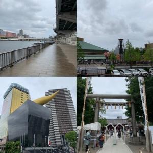 隅田川テラス15キロ:初夏の曇り空時々雨そして蒸し暑い