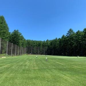 今年初のゴルフの練習:52w、9I、7I、3Wの4本で、2日間50球ずつ打ってきた