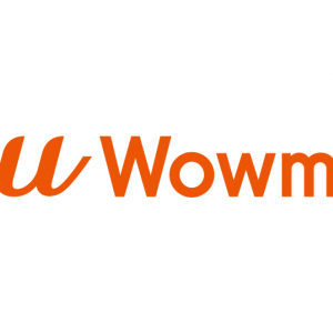 【au WALLETポイント】au Wowma!で50%増量は正解なのか?