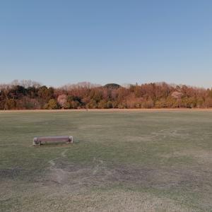 ★公園でランチ★