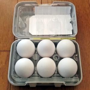 キャンプで生卵を持っていくならセリアのパックケースMです