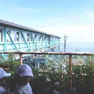 インスタ映え抜群のJR根府川駅へ、ロマンスカーで行く旅【子連れ旅行】