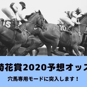 【レース前】ウィリアムヒル1.25倍、bet365は1.12倍!菊花賞2020のコントレイルオッズ。