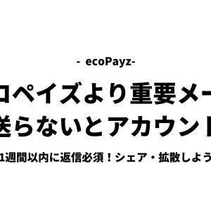 ecoPayzから重要メール「中断無くアカウントへのログインを続行するために再確認してください」