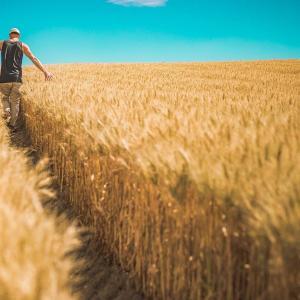 農家が結婚できないたった2つの理由と諦める前にやるべきこと