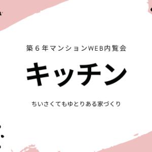 【Web内覧会】入居6年目マンションのキッチン タカラスタンダード