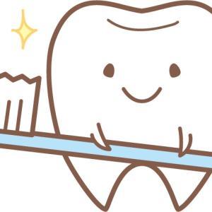 健康な歯から虫歯まで6種セット