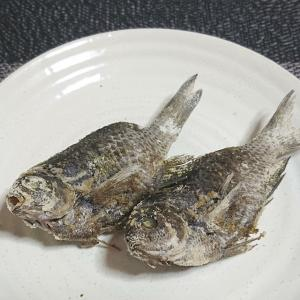 雑魚の一瞬の輝き②