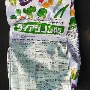 白菜の播種
