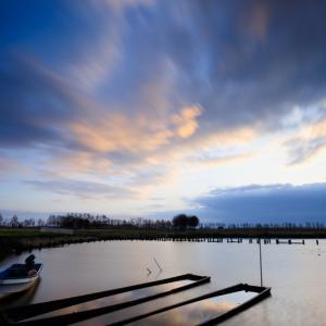 曇天の福島潟を撮る