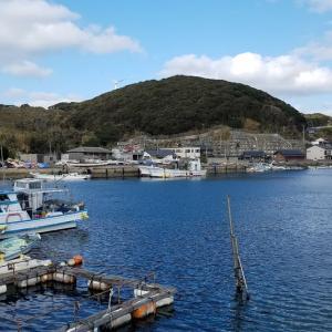 尺カサゴ釣り/身近な漁港という名の楽園