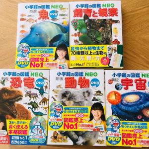 長男4歳の誕生日に「小学館の図鑑NEO」大人も子供も楽しめる!