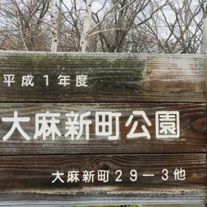 【札幌近郊】大麻新町公園に行ってきました。