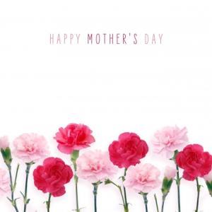 【母の日ギフト2021】間に合ったー!お菓子とお花を楽天で購入