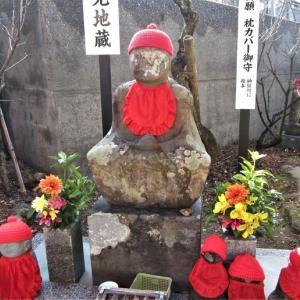 善楽寺は土佐神社に寄り添う30番札所