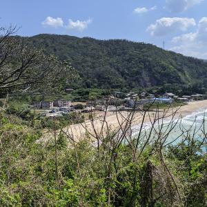 【奄美大島への移住】住居探しのコツと期間【最短2ヶ月で移住】