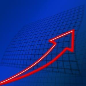 株価暴落時でも利益を出せる、ダブルインバースとは?【ETF】