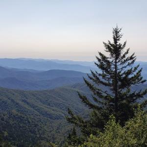 【アメリカ】グレートスモーキーマウンテン国立公園の楽しみ方
