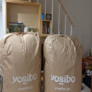 Yogibo MAX(ヨギボーマックス)を投入してみた。しかも、2つだ!!