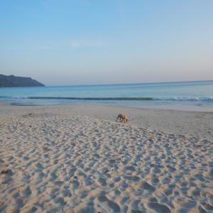 インド アンダマン諸島 3泊4日実際のスケジュール