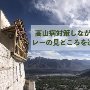 レー初日の歩き方〜高山病対策しながら、観光を楽しみたい〜
