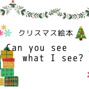 【クリスマス英語絵本】ミッケシリーズ「Can You See What I see?」を購入
