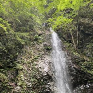 赤ちゃんと日帰りドライブ旅行★東京都唯一の村にある滝へ【9ヶ月👶】